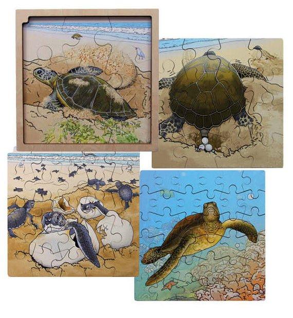 Life cycle puzzel Schildpad