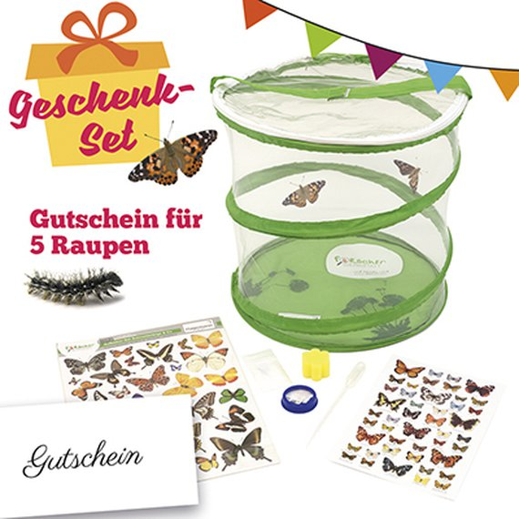 Schmetterling-Zucht-Set, kompakt, 8-tlg