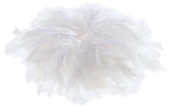 Donsveren wit, 100 gram (ca. 750 stuks). Lengte 6-8 cm.