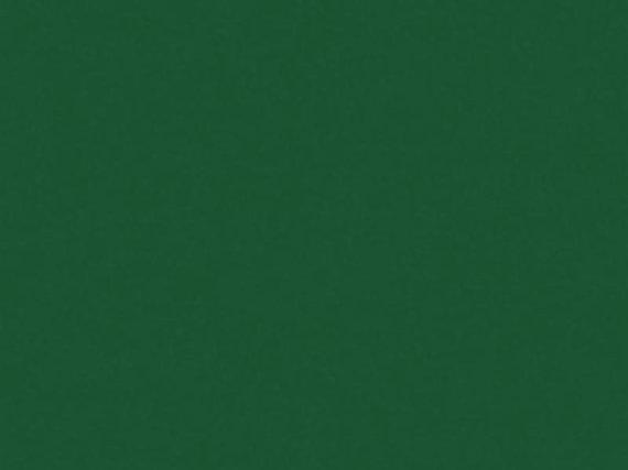 Gejocolor grün 1000ml. Die Allroundfarbe.