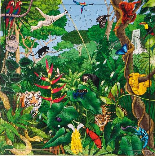 Puzzel Regenwoud interactief