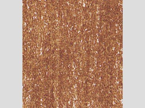 Kleurknotsen/Super Ferby, ongelakt, licht bruin 1 dozijn