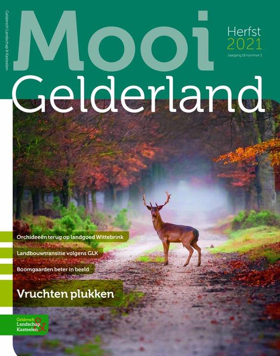 Mooi Gelderland herfst 2021