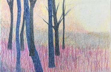bomen in park Zypendaal getekend door kunstenaar Ankie Krom