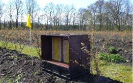 Nestblokken voor de solitaire bijen in een blauwe bessen plantage