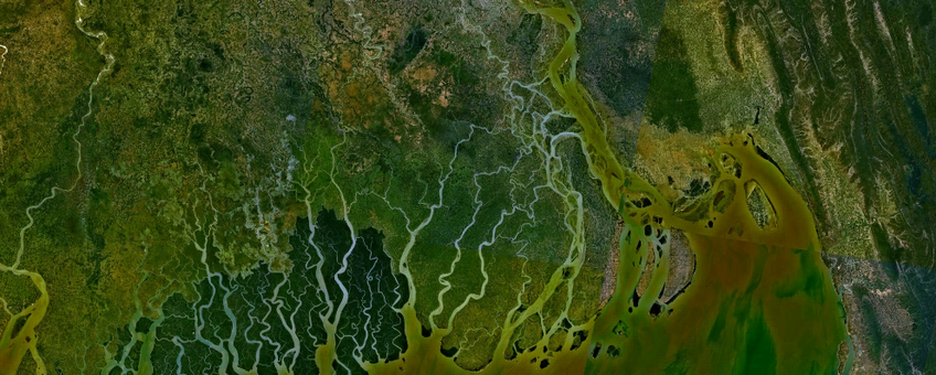 Gangesrivierdelta