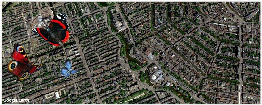 Amsterdam luchtfoto - primair