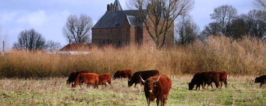 Rode Geuzen bij Slot Loevesten