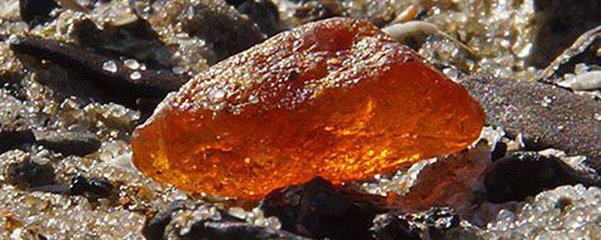 Het als eerste gevonden stuk barnsteen