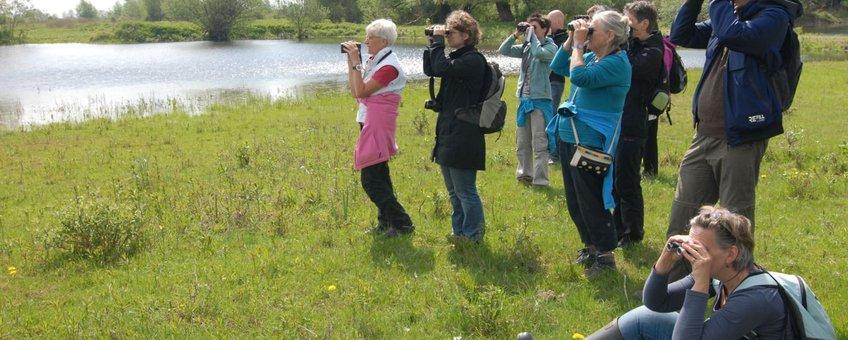 Nationale Vogelweek 2013 2