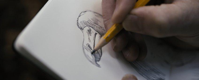 De geïllustreerde dodo kent vele vormen en karikaturen.