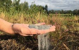 Steenmeel in de hand