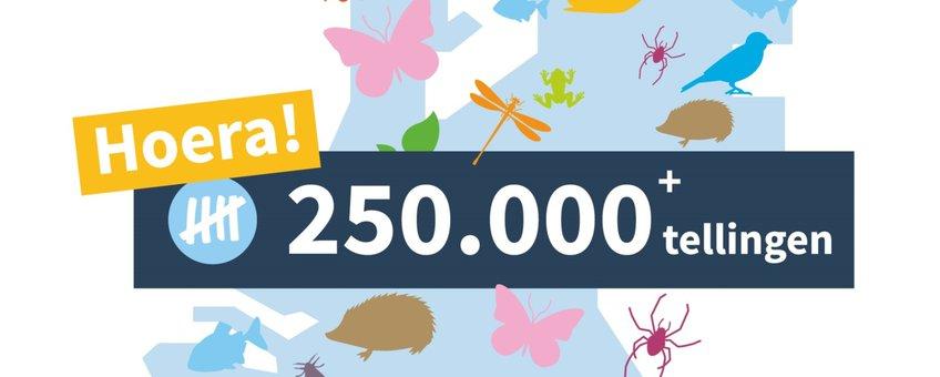 250.000 Tellingen