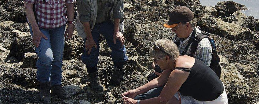 Succesvolle Excursie Langs de Laagwaterlijn van de Oosterschelde voor Sponsoren van Natuurbericht