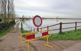 Hoogwater langs de Grensmaas