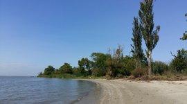 Habitat op de overgang van zoet en zout water, Tagangrog Baai (Rusland)