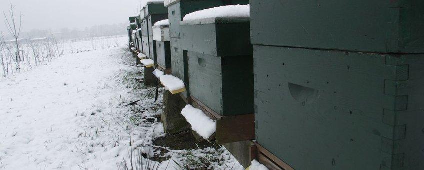 Bijenkasten in de sneeuw