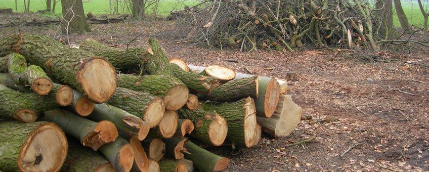 Geveld hout