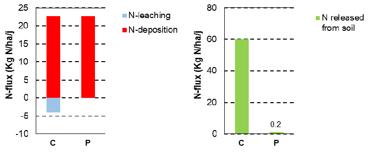 Deposition and leaching to the groundwater, and amounts of nitrogen released by the decomposition of organic matter in dry heathland in the Netherlands without (C) and with (P) soil stripping