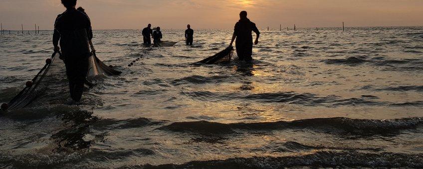 Zegenvissen in de Delta