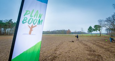 Campagne Plan Boom