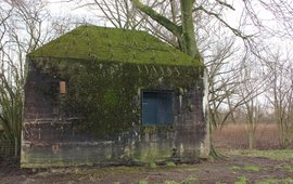 Bunkers van de Nieuwe Hollande Waterlinie  Wiegert Steen