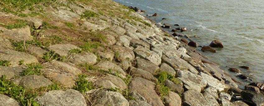 Nederlandse rotskusten van natuursteen: Grote oppervlakken Noordse stenen op de Uitdammerdijk