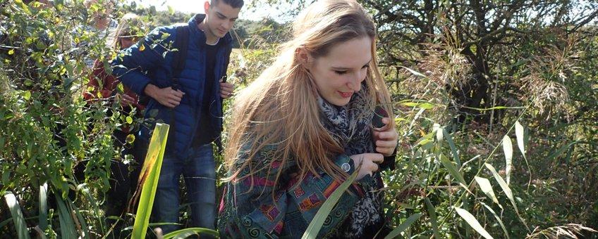 Studenten bij het Haringvliet