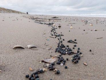 Een lang lint van plastic bio-korrels zichtbaar in de vloedlijn op Texel