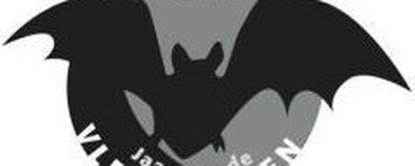 logo jaar van de vleermuizen