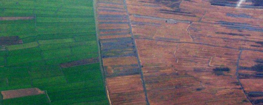 Luchtfoto laagveenmoeras Weerribben Foto: Debot, GFD-Licentie
