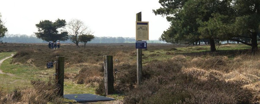 Matingerveld, Roeland Vermeulen