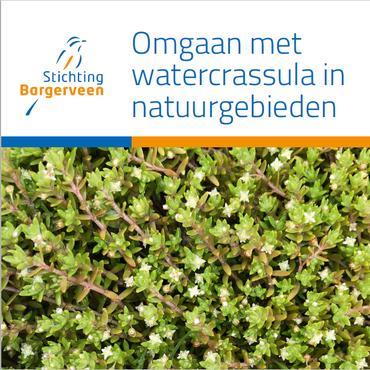 Brochure 'Omgaan met watercrassula in natuurgebieden'