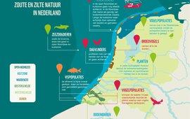 Infographic zoute en zilte natuur in Nederland