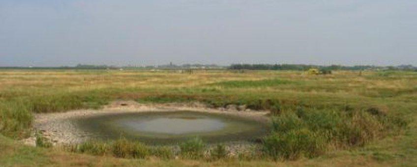 Brak grasland Yersekemoer De Waal