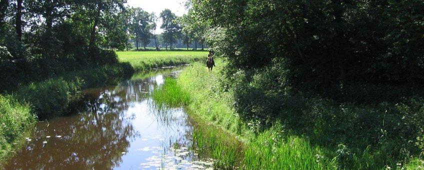 De Hagmolenbeek nabij Bentelo
