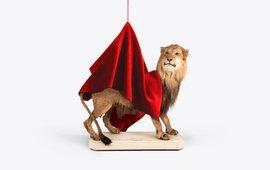 Uitgestorven Kaapse leeuw