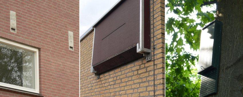 Vleermuiskasten voor bomen en gebouwen