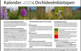 Orchideeënkalender