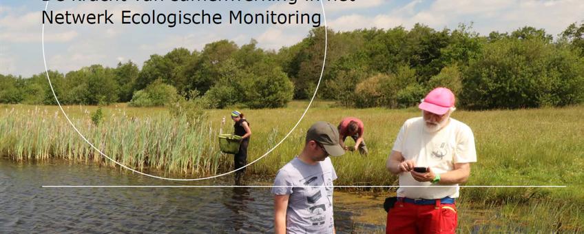 Meten wat er leeft - De kracht van samenwerking in het Netwerk Ecologische Monitoring