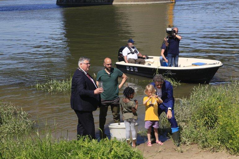 De zeldzame trekvissen werden te water gelaten door burgemeester Hubert Bruls van Nijmegen en Donné Slangen van het ministerie van Landbouw, Natuur en Voedselkwaliteit, daarbij geholpen door enkele kinderen