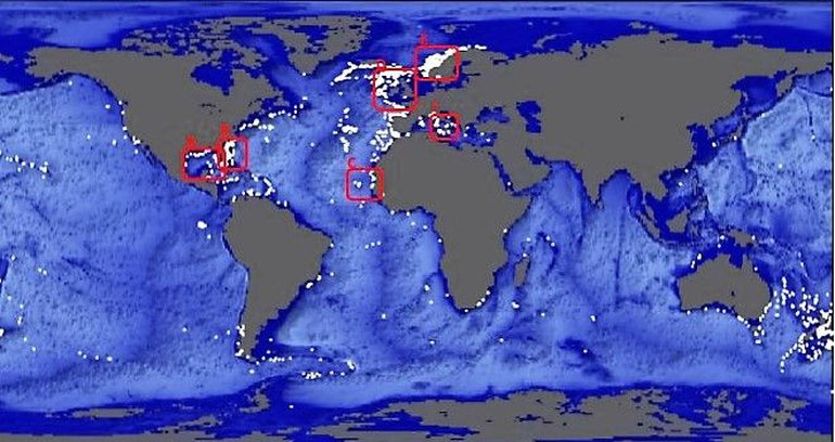 Global occurrence of cold water coral communities (white dots) based on the data base of the United Nations Environment Programme (UNEP)