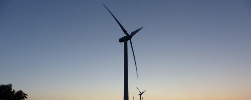 Vaak blijven de resultaten van vleermuisonderzoek bij windturbines geheim.
