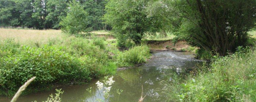 VOOR EENMALIG GEBRUIK Landschap met water