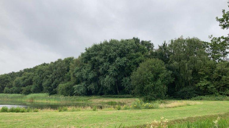 Het Dassenbos op de campus van Wageningen University & Research, dat dient als één van de bemonsteringslocaties