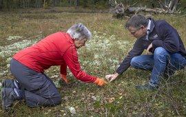 Projectleider en vrijwilliger in natuurgebied De Zoom Soest