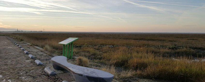 Bankje en infobord bij het uitkijkpunt op de Holwerterwestpolder