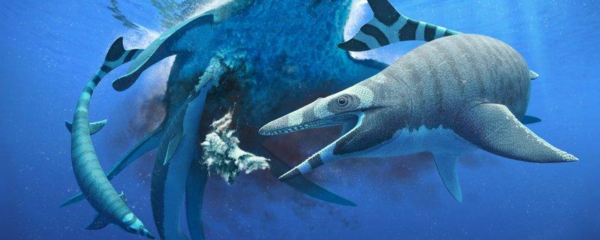 Een reconstructie van Xenodens calminechari die een karkas van de elasmosaurid Zarafasaura oceanis opruimt