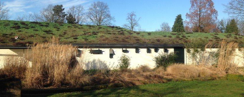 Het gebouw van Museum Klok en Peel met een groen dak en nestkasten