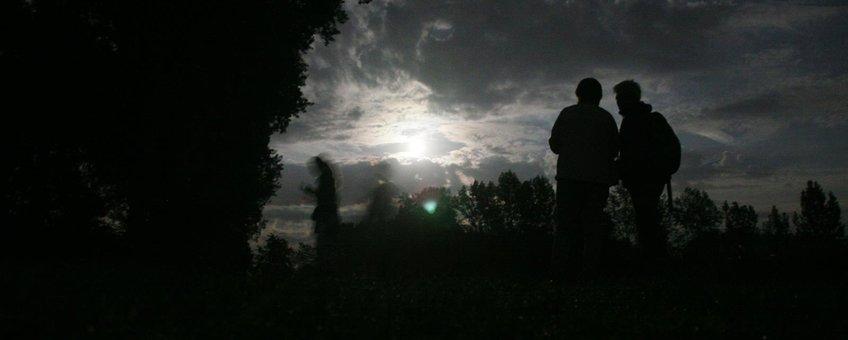 Excursie tijdens de Nacht van de Vleermuis